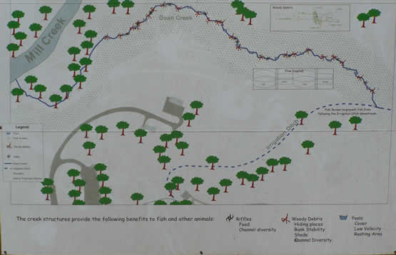 Drawing showing location of Doan Creek the irrigation ditch and where the new restored channel will be.