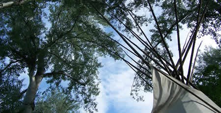 Looking up in the Tipi grove, one can see the top of the tipi, leaves of the poplars, and blue sky.
