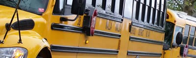A close-up of line of buses is cropped to focus on the crayon yellow color of the buses.