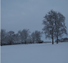 Grounds are covered with snow, but overcast sky and snow both all blue.