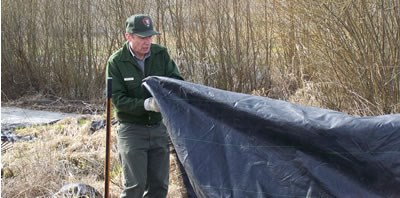 ranger spreading black mulch-cloth onto ground