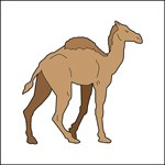 Drawing of an Ancient Camel.