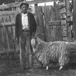 Rancher and angora goat.
