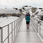 A visitor walks down a silver board walk towards dunes with vegetation
