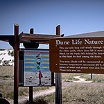 Two signs, one illustrating a hiker and the other with information about Dune Life Nature trail