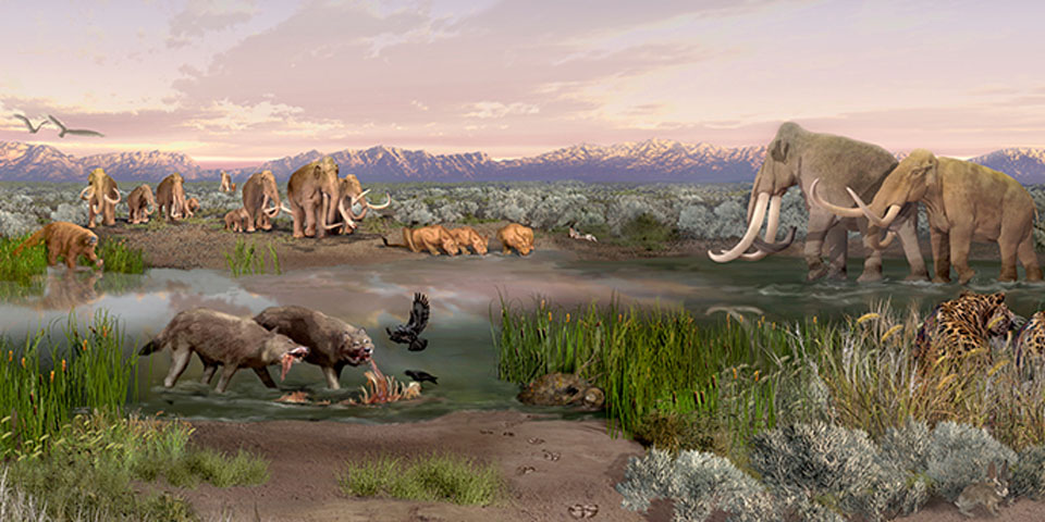 Pleistocene animals in Tularosa Basin