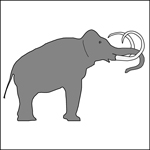 drawing of a Columbian Mammoth