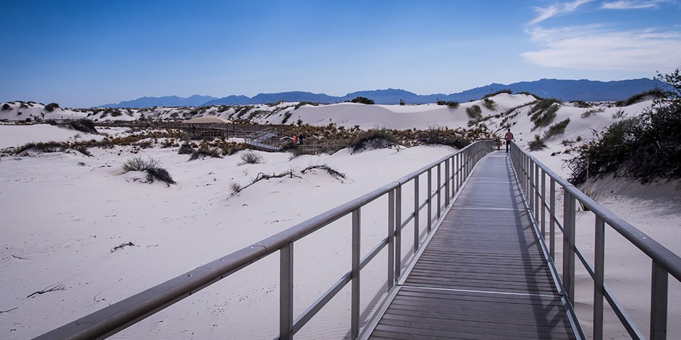 Visitor walking on the Interdune Boardwalk Trail at White Sands National Monument