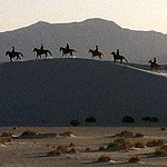 Six horseback riders on the dunes.