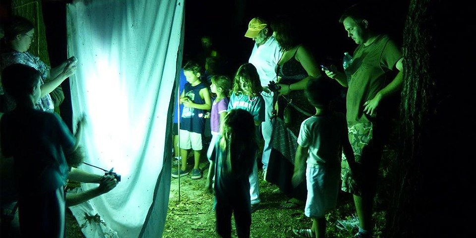 Youth and adults gather around a white sheet lit with black light to observe and take pictures