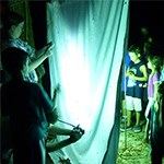 White sheet with adults and children looking at moths