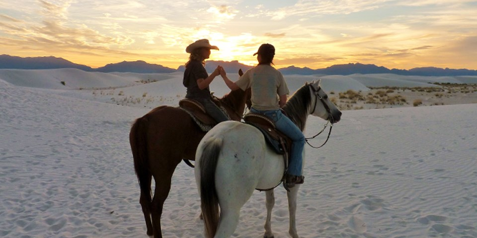 Two visitors riding horses holding hands with a sunset on the background.