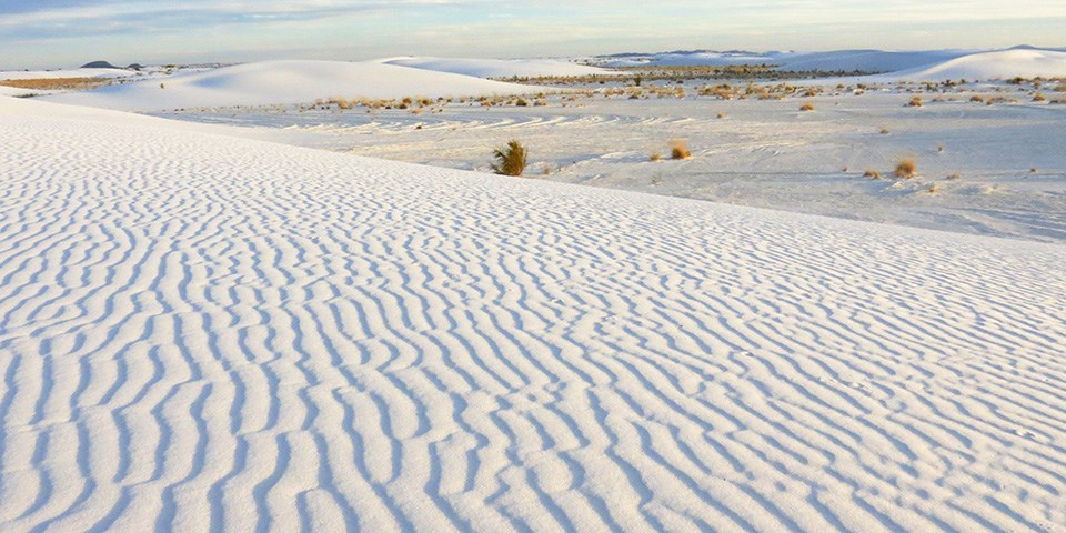 New Mexico Museum Open On Christmas Day 2020 Operating Hours & Seasons   White Sands National Park (U.S.