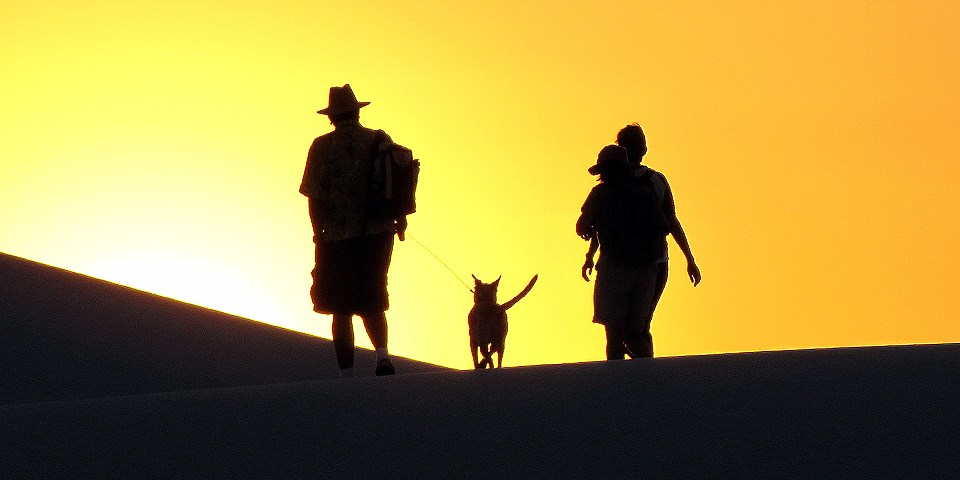 Silhouettes of visitors and a dog hiking on the dunefield.