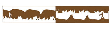 Black Hills Parks & Forests Association