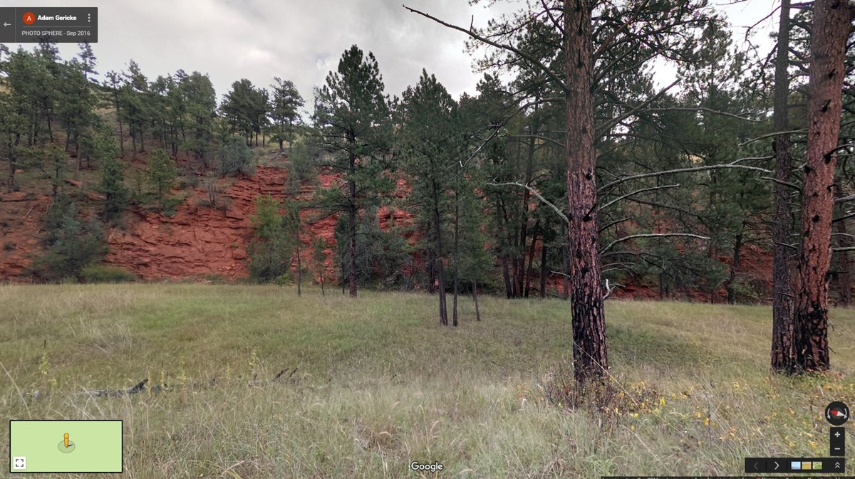 Forest meadow surrounded by red cliffs