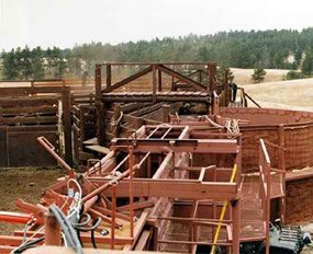 Half-finished construction of new bison corrals, dated 1965