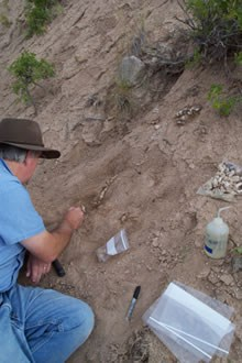 Dr. Greg McDonald Excavating the Site