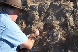 Dr. Greg McDonald Carefully Removing Soil Around a Fossil