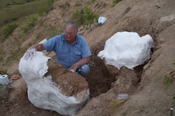 Dr. McDonald Removing the Fossils From the Ground