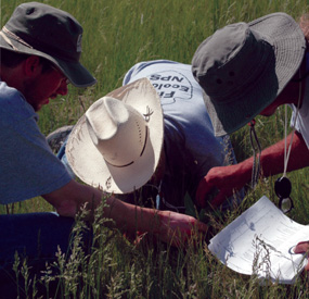 Scientists have begun to note changes in plant communities related to warming temperatures.