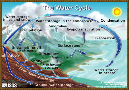 A diagram of the water cycle.