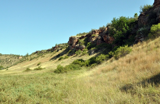 Sunny, summer day looking up at the cliffs that make up the buffalo jump.