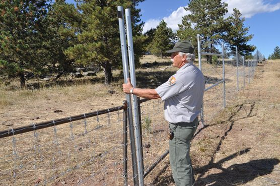 Mark Greene, General Maintenance Supervisor at Wind Cave National Park, is standing next to an example of a drop-down gate that will be used to help Wind Cave and Custer State Park manage their elk population.