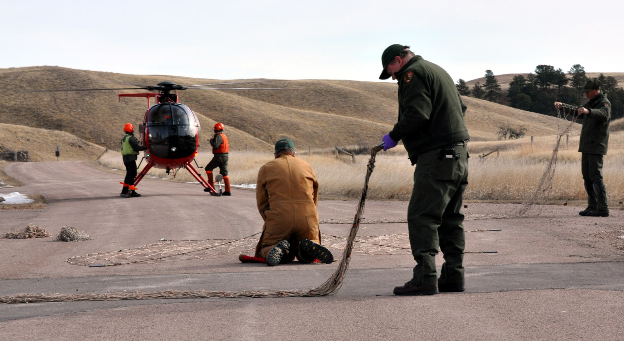Crew members from Leading Edge Aviation prepare to board their helicopter while, from left, Dr. Glen Sargeant, Dan Roddy, and Duane Weber repackage nets used to capture elk.