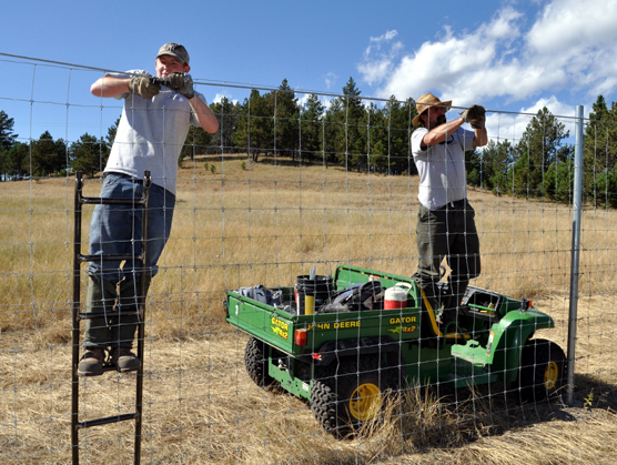 two park employees working on the elk fence