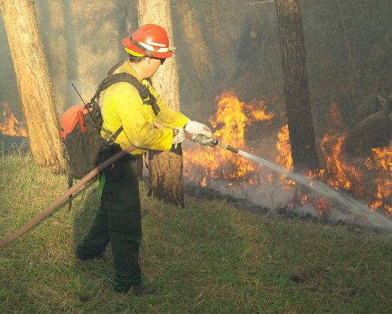 Firefighter holding a hose and spraying water on flames down the hill from him.