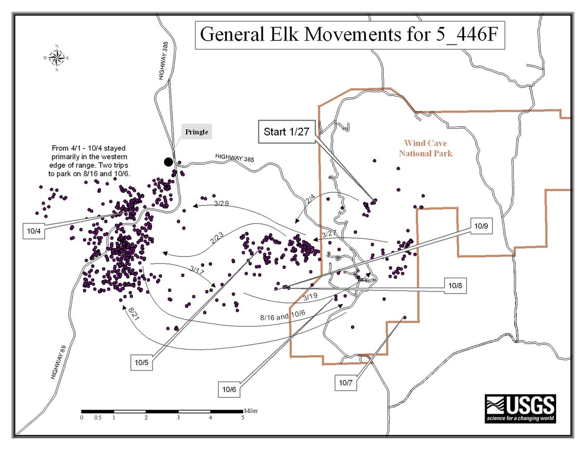 Map showing the movements of an elk collared in 2005.