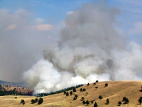 Smoke rising from the Hay Flats/Red Valley prescribed fire in Wind Cave National Park.