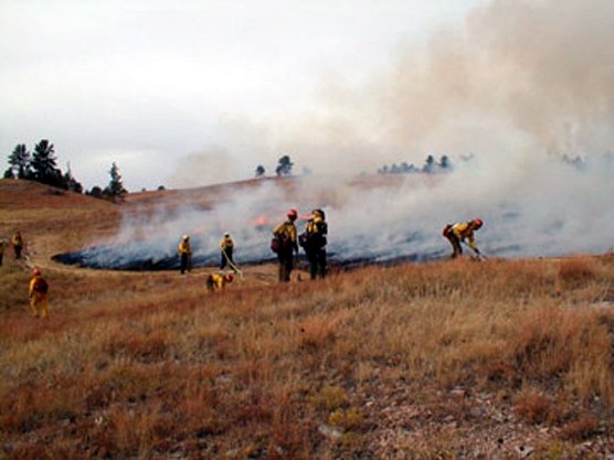 Firefighters conducting a prescribed burn in Wind Cave National Park.