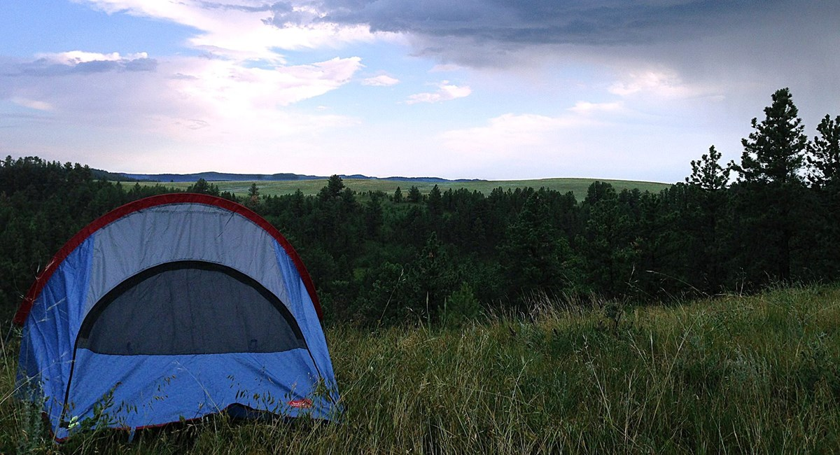 a tent in a grassy meadow overlooking the forest and prairie