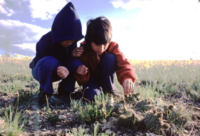 Children Looking at Cactus on the Prairie at Wind Cave National Park