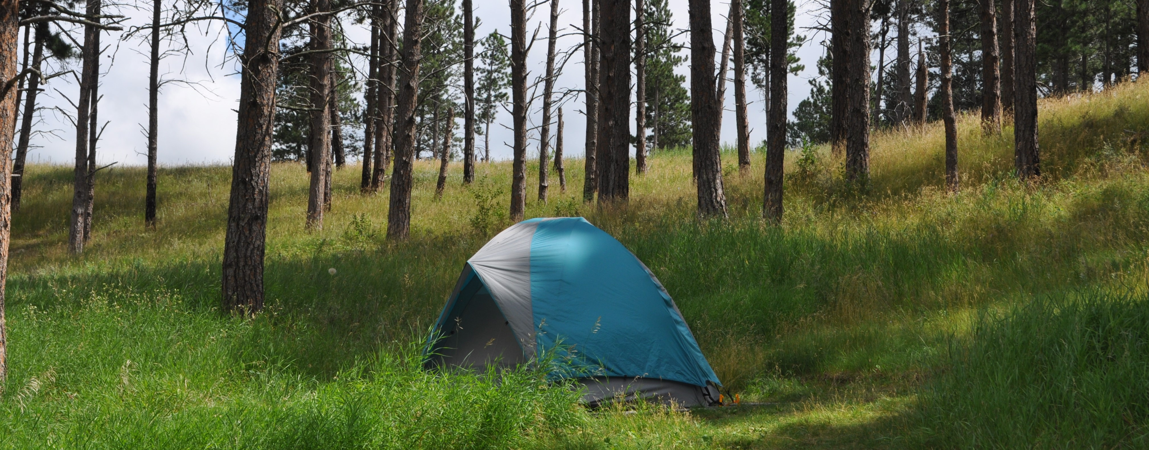 Elk Mountain Campground - Wind Cave National Park (U S  National
