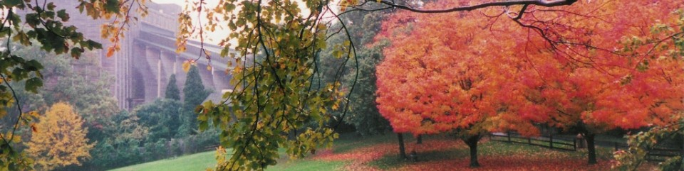 Fall at Wolf Trap