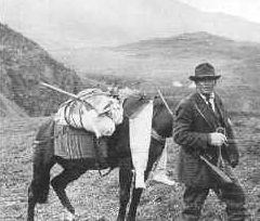 Historic photo of prospector with horse carrying supplies in high elevation tundra.