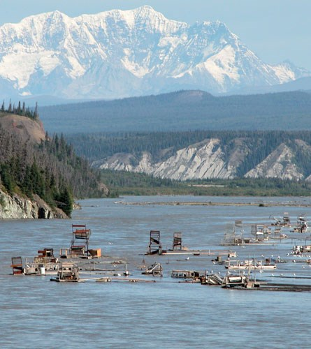 Chitina Fishheels in the Copper River