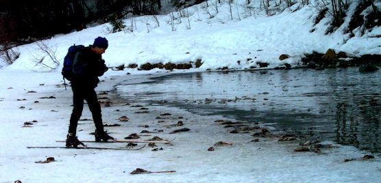 spawning fish during winter