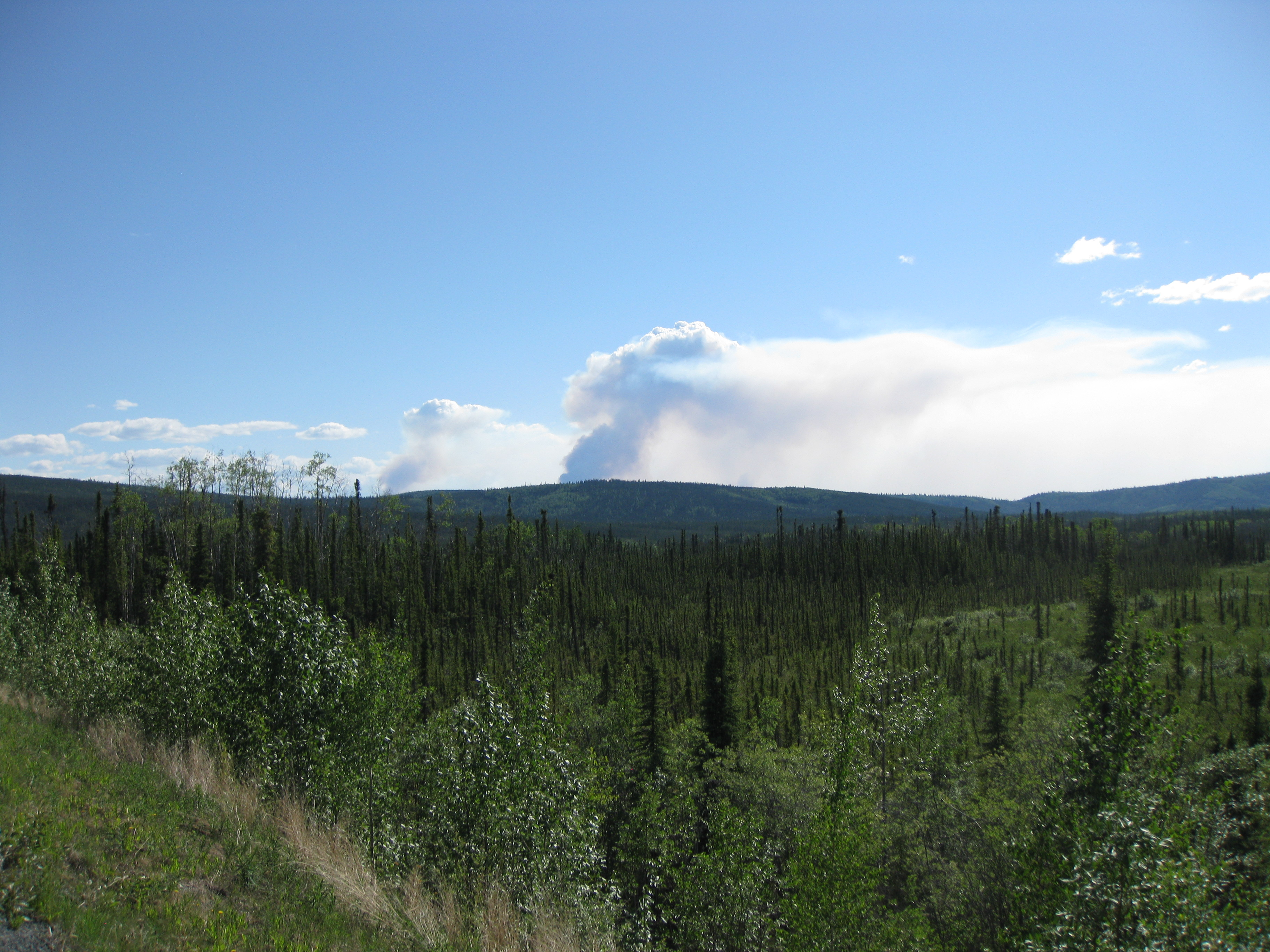 Chisana River Fire June 24