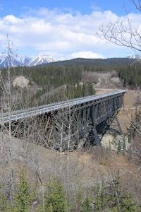 Former railroad bridge, the Kuskulana Bridge, in forest with mountains in background.