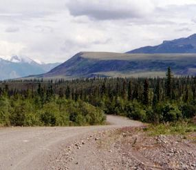 View along the Nabesna Road