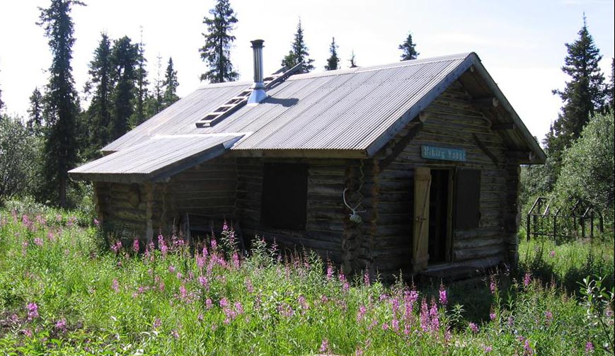 Viking Lodge Cabin Wrangell St Elias National Park