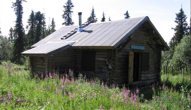 Viking Lodge Cabin