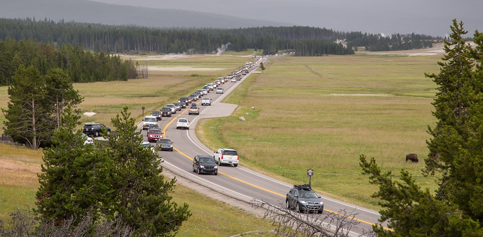 Traffic jam in the Lower Geyser Basin