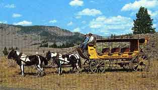 "Image from a circa 1950s postcard showing a ""Tally-Ho"" (possibly the same 1004 numbered coach in the collection) taken near the Roosevelt Lodge. Although missing the roof seats, the coach at this point appears to retain most of its other original features."