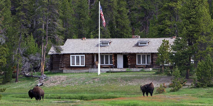 Bison graze and a flag flies in front of a log structure surrounded by trees