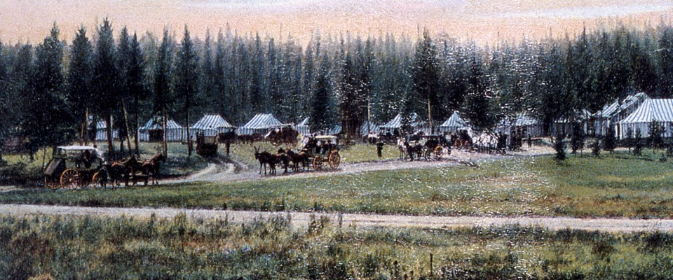 Horse-drawn wagons in front of a tent camp surrounded by trees